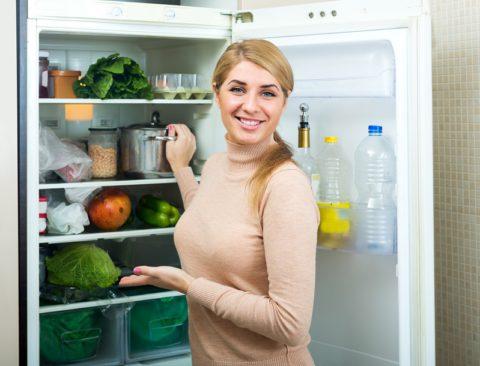 choisir son frigo